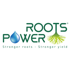 Logo Roots Power