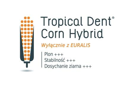 Logo Tropical Dent