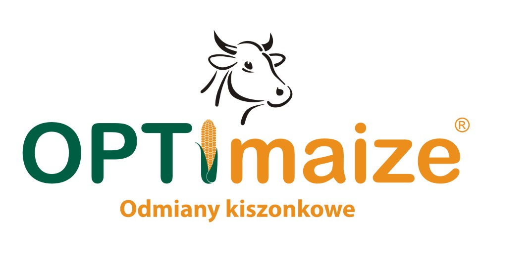 Logo optimaize
